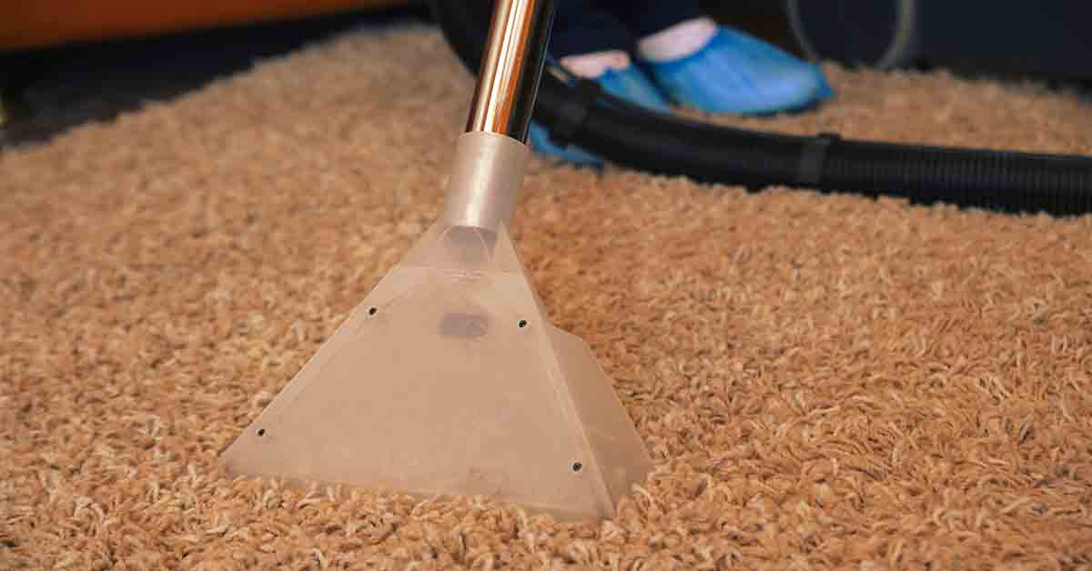 How to Remove Dry Slime from Carpet